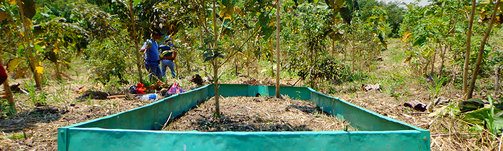 In the San Martin region of Peru, several experimental experimental structures were installed on different parcels in order to measure the impact of trees on soil erosion.See the detailed study here.