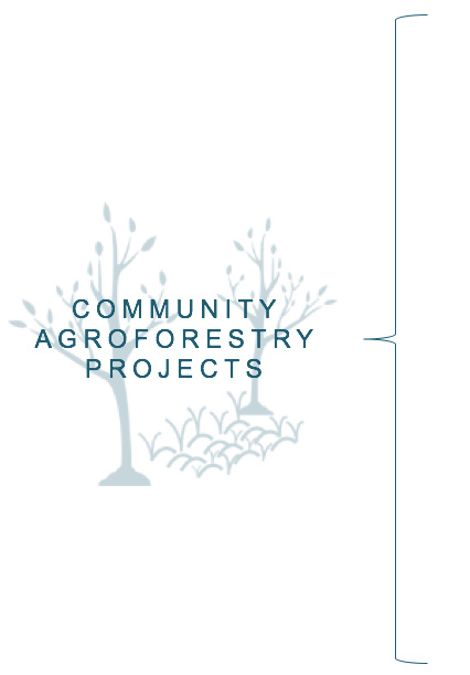 Community Agroforestry Projects