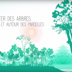 Agroforesterie-fr-pur-projet