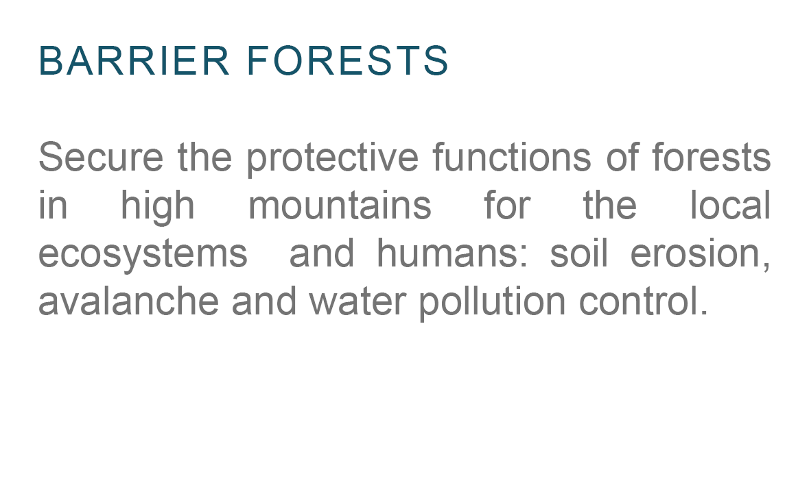 Barrier-Forests-Planting-Model