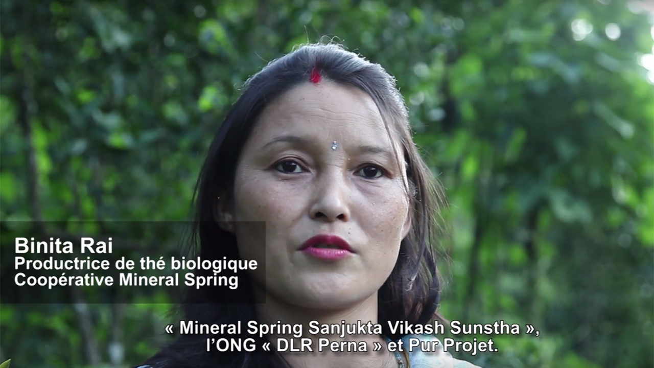 Darjeeling-video-interview-binita-reforestation-india