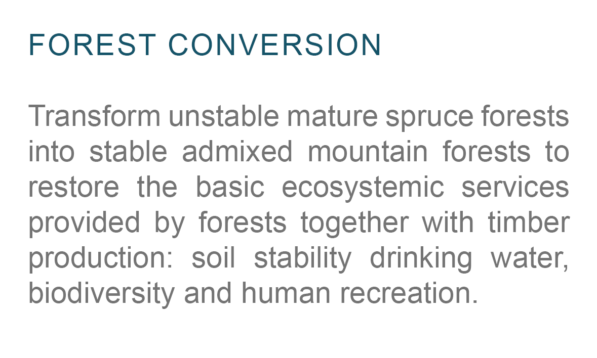 Forest-Conversion-Planting-Model