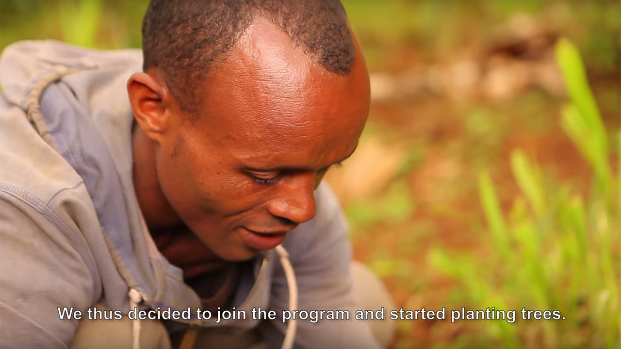 Sidamo-Ethiopia-Reforestation-Video